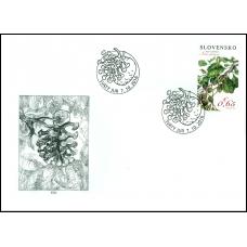 619 + 620 + 621 - Ochrana prírody NPR Šúr pri Svätom Jure - Jelša lepkavá, papraď ostnatá, krušina jelšová