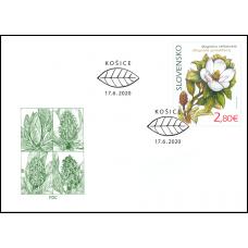 FDC 715 - Ochrana prírody: Botanická záhrada UPJŠ v Košiciach – magnólia veľkokvetá