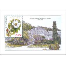 Hárček - Ochrana prírody: Botanická záhrada UPJŠ v Košiciach – magnólia veľkokvetá